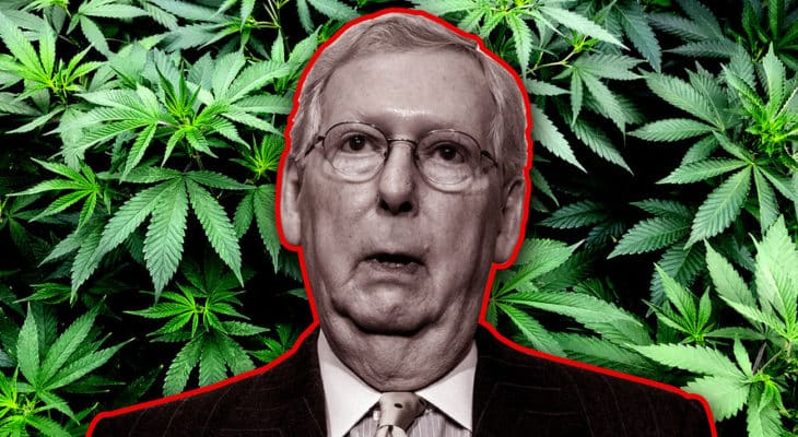Mitch Mcconnell to Discuss Cannabis Reforms in Meetings With Industry Administrators